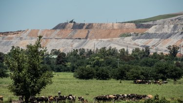 Mount Arthur's coal mine – the biggest in NSW – looms over the Muswellbrook countryside.