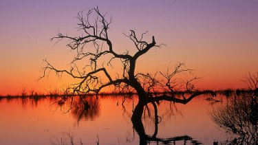 Reflections in Lake Menindee at sunset in Kinchega National Park,NSW .