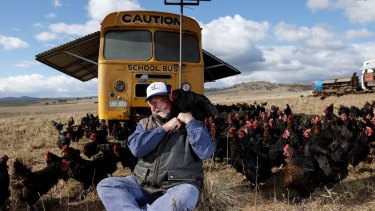 Papanui farm uses buses converted into mobile chicken coops to move the birds around their farm and produce 'open range' eggs.