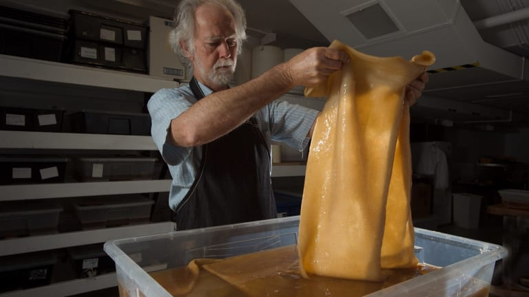 Dr Peter Musk, a scientist catalyst at The Edge Southbank, with some of the vegan leather being produced from kombucha.