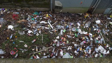 A container deposit scheme is an answer to the state's litter problem, groups say.