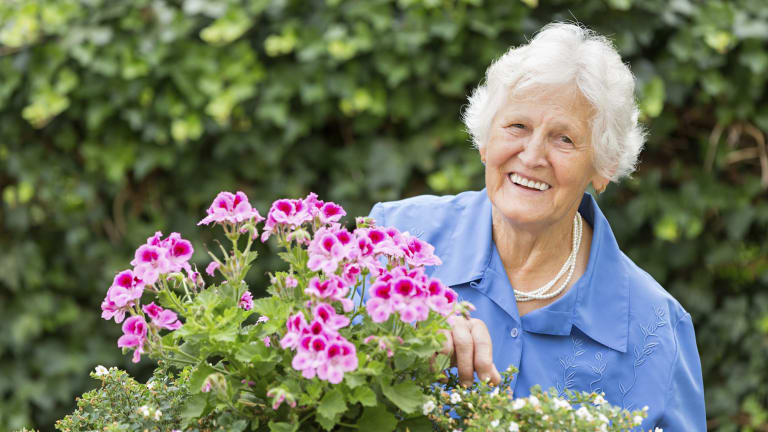 Grandma In The Garden.