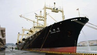Japanese whaling vessel Nisshin Maru is anchored in Shimonoseki, western Japan, on Friday.