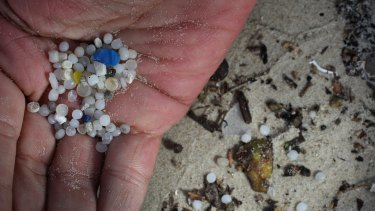 Dave West holds small bits of plastic that he found on the beach.