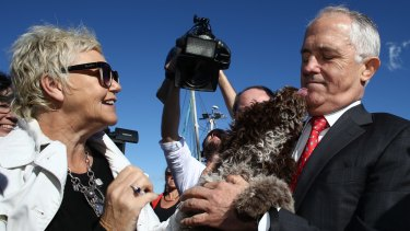 Malcolm Turnbull is licked by Brando the dog on the campaign trail on the NSW south coast on Monday.