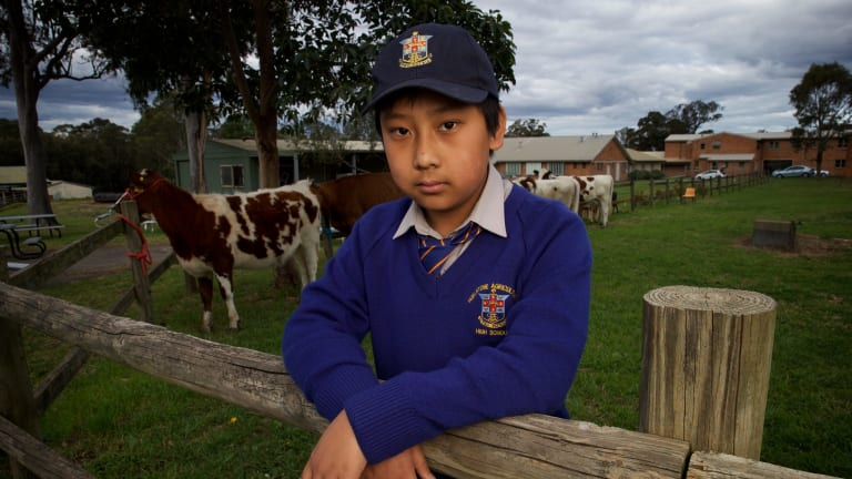Student Alexander Tran organised a petition opposing a new pub near his school.
