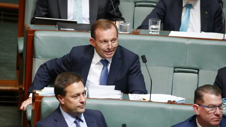 Tony Abbott's proposal to reduce immigration, close the Human Rights Commission and cut subsidies for solar and wind energy triggered a flood of support from Liberals.