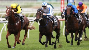 Sparkling display: Hugh Bowman rides Pasadena Girl (blue and white) to victory in the Champagne Stakes.