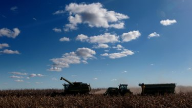 Harvesters process corn on the Liverpool Plains, where a major coal mine won federal approval.