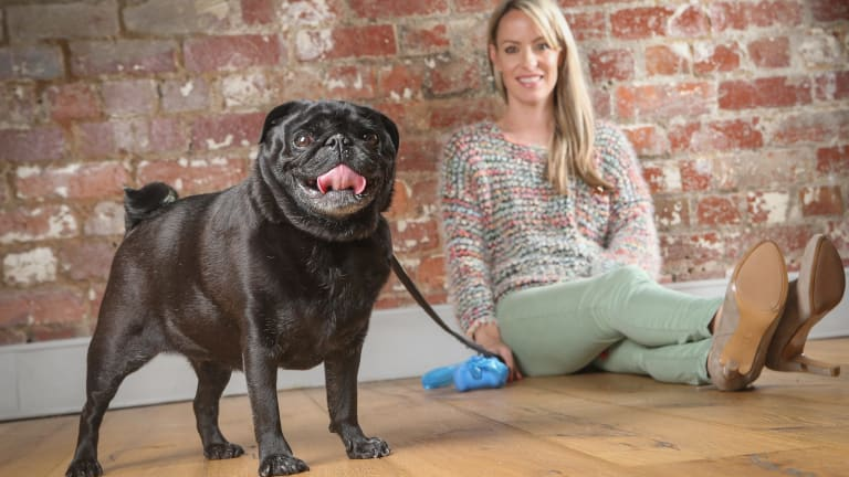 Amanda Campbell has pet insurance for Henry, her six-year-old pug.