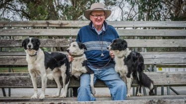 President and competitor Charlie Cover and his dogs, Jock, Libby and Queen at the 75th National Sheepdog Championship's held in Hall.