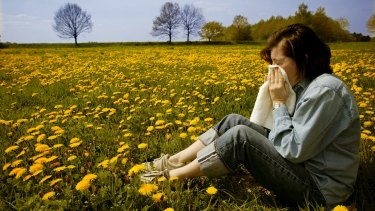Revised US guidelines confirm nasal corticosteriod sprays are the best treatment for allergic rhinitis.