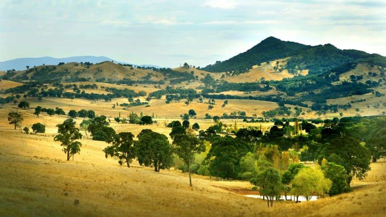 Scenic: The hills around Mansfield, in north-central Victoria.