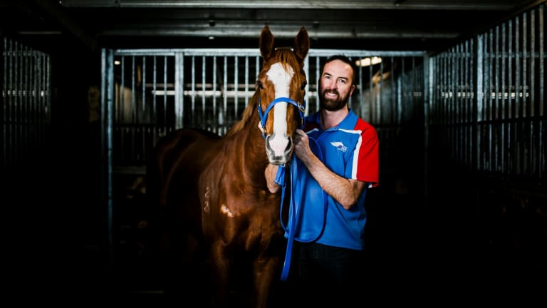 Canberra trainer Nick Olive is hoping Single Gaze gets a place in the CF Orr Stakes, but she'll be at her best in Sydney.