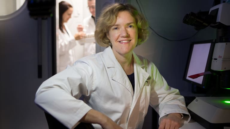 The work of geneticist Coral Warr, who works with fruit flies, could have implications for research into neurological conditions such as autism spectrum disorder, schizophrenia and attention deficit hyperactivity disorder.