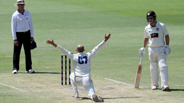 Please please me: Nathan Lyon appeals on day two at the WACA.