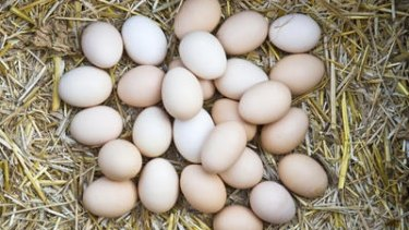 Many egg producers have been fined for misleading free range eggs claims.