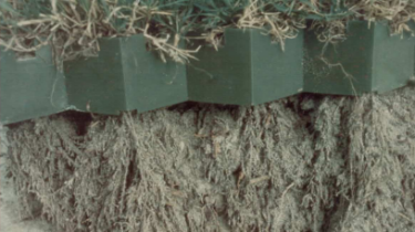 A side-on view of how grass grows through the porous paving blocks, allowing normal root growth.
