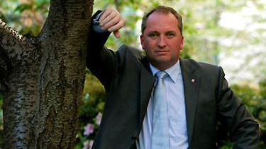 New deputy prime Joyce says banks will be worry about a fall in house prices.