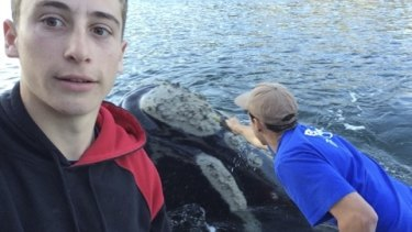 Michael Riggio (left) takes a selfie as Ivan Iskenderian reaches for the whale.