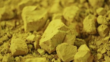 In a December report, Morgan Stanley said spot uranium would remain stuck near $US19 this year, rise to $US21 in 2018 and average $US24 by 2019.