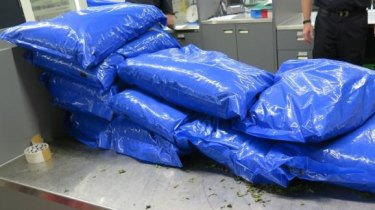 Huge seizure of drug-like plant at Melbourne Airport