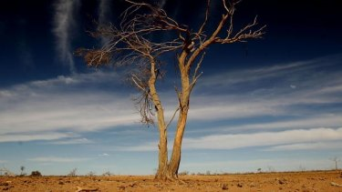 Climate change could have serious ramifications for insurers such as Suncorp.