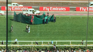 A curtain surrounded Red Cadeaux on the Flemington straight after the race.
