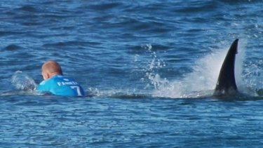 Mick Fanning was attacked by a shark during the J-Bay Open, managing to punch and kick it away.