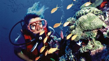 """""""This is still the world's Great Barrier Reef."""""""