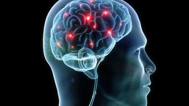 When your brain relies on an electromagnetic field, similar fields in the outside world become a threat.