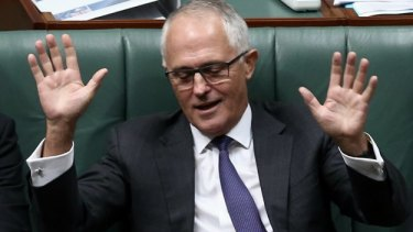 Content to wait: Communications Minister Malcolm Turnbull.