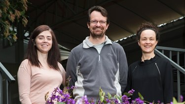 From left, Dr Joanne Wallis, Jeremy Smith and Dr Alexandra Webb from the Australian National University each received a citation for excellence in the government's Australian Awards for University Teaching.