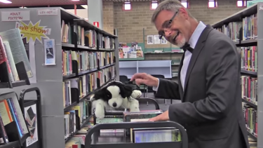 On the wacky side: a Nowra librarian in the video.