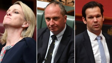 Referred to the High Court: Nationals Fiona Nash, Barnaby Joyce and Matt Canavan.