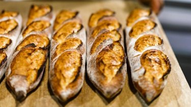 Sydney's Sonoma Bakery is opening a Canberra store at the