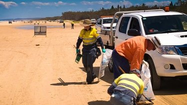 Crews of up to 30 people worked to clean-up the oil patties that washed ashore last week.