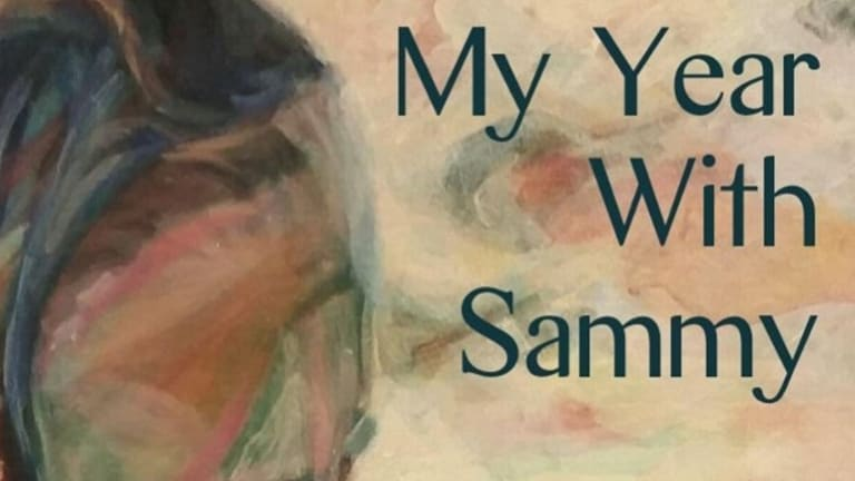 Libby Sommer makes sharp and subtle observations of Australian society in her latest work, My Year with Sammy.