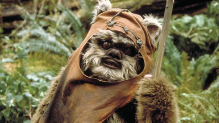 Ewoks will not feature in the upcoming <i>Star Wars: The Force Awakens</i> film.