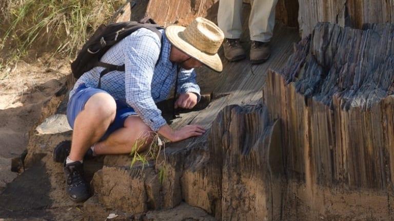 Adam Nordsvan studying the sediments in Georgetown.