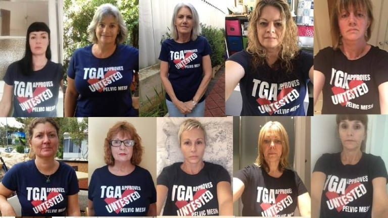 Australian Pelvic Mesh Support Group members fought for a Senate inquiry into how pelvic mesh devices were cleared for use in Australia.