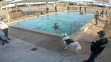Images also show an un-muzzled dog approach girl as she is trying to get out of a pool.