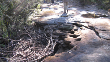 A dried-out creek above the Dendrobium mine in the Special Areas.