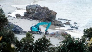 The dead whale being buried on Nobbys Beach, Port Macquarie.