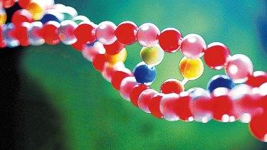 Life's building block: DNA.