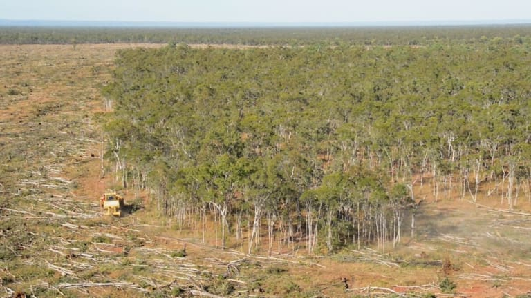 Queensland government efforts to re-introduce land-clearing curbs failed in mid-2016.