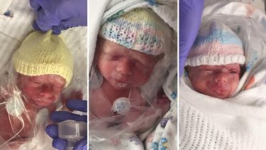 Pearl, Henry and Rufus were delivered by caesarian section on 3 July.