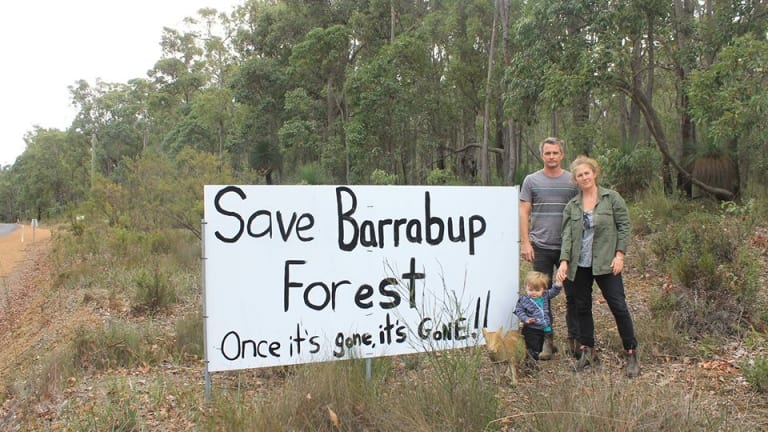 Locals have successfully halted clearing of the forest pending old growth and Aboriginal heritage assessments.