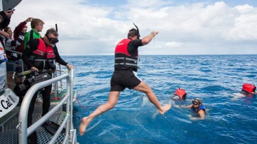Hervey Bay Whale Watch provides a swim the whales under agreements with QPWS.