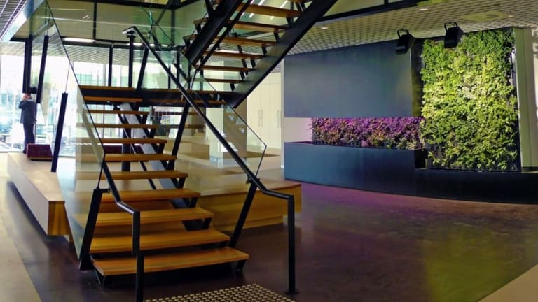 One of the 'living walls' inside the Canberra building housing the Department of Education and Training.